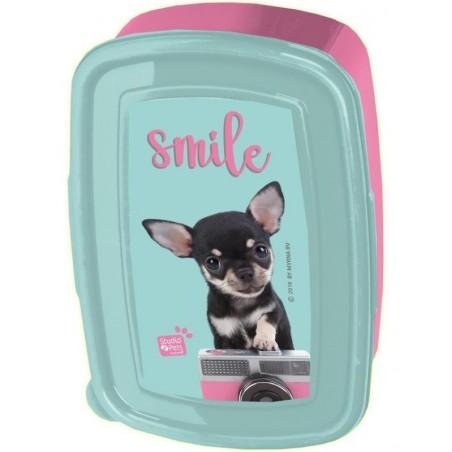 Studio Pets - Broodtrommel chihuahua Smile - Blauw en Roze